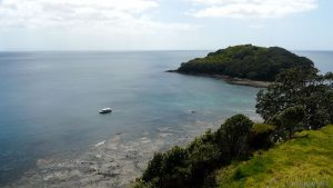 Cape Rodney-Okakari Point, Goat Island Marine Reserve, New Zealand. Image Source: Wikimedia Commons