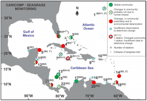Distribution of seagrass community monitoring stations in the Caribbean, indicating communities potentially altered by environmental degradation (van Tussenbroek et al., 2014)