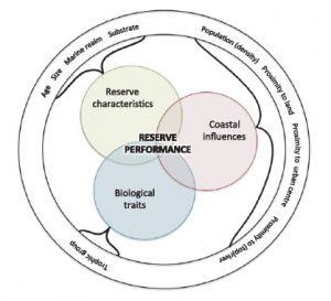Diagram representing the 3 major categories of determinants expected to influence the performance of marine reserves.