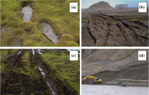 Antarctic vegetation and the damage caused to it by human activity. A) Moss and footprints b) Tire tracks through vegetation c) Vehicle tracks in moss d) Quarrying (Hughes et al., 2015)
