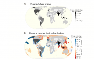 Figure 2. Global distribution of (a) country-specific shark and ray landings averaged between 2003 and 2011 and mapped as a percent of the total. (b) the difference between the averages of landings reported in 2001-2003 and 2009-2011