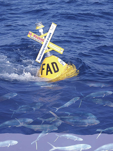 A fish-aggregating device (FAD) with mahi mahi schooling underneath. https://www.flickr.com/photos/landlearnnsw/3017619031
