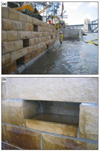 (a) Intertidal 'rock-pools' constructed in the vertical dace of a seawall in Sydney Harbor (Australia). These features of habitat were introduced to seawalls to mitigate efforts of loss or degradation of rocky platforms on intertidal biodiversity. (b) Details of a rock-pool retaining water during low tide. (Bulleri & Chapman, 2010)