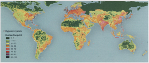 The locations of hypoxic systems match the global human footprint, which is expressed as a normalized percentage, particularly for the Northern Hemisphere where more information is available (Diaz et al. 2008).