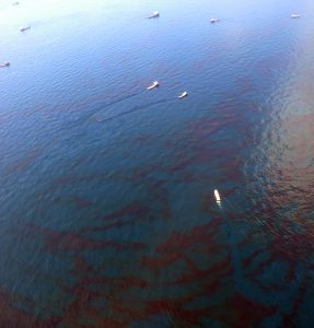 An oil slick untreated by dispersants being cleaned up by skimmer boats. The oil appears very dark and dense from the surface. (Source: Wikimedia Commons)