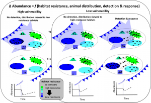 Figure 2: Snook Habitat Resistance, Animal Distribution, Detection and Response
