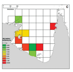 Predicted entanglement risk to turtles in the GOC based on relative turtle density and ghost fishing efforts.