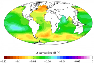 Global ocean acidification projections