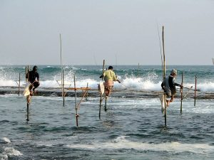 800px-Stilts_fishermen_Sri_Lanka_02