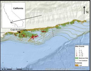 Figure 2. Map of sea otter counts (red circles) and maximum kelp coverage south of Point Conception (Lafferty and Tinker 2014).