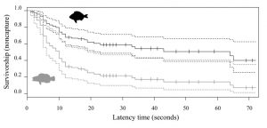 Graph correlating latency time and survivorship (non-capture) for S. scriba (in gray) and D. annularis (in black). The solid lines show the survival distribution and the broken lines show the 95% confidence interval