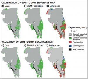 Real seagrass observational data compared to predictions using the model developed by Adams et al. for 2004 and 2011. a, b, and c are based on seagrass observed in 2004 and d, e, and f are based on seagrass observed in 2011. a/d show the observed seagrass data, b/e show the predicted seagrass using the model, and c/f show the difference between the real observations and the model predictions.