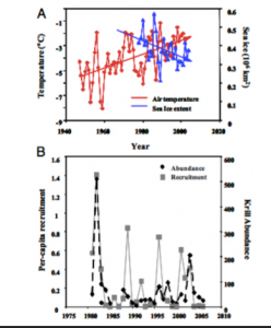 Researchers Wayne Z. Trivelpiece, Jefferson T. Hinke, Aileen K. Miller, Christian S. Reiss, Susan G. Trivelpiece, and George M. Watters compared relative krill abundance in both the Scotia Sea and WAP in regards to several variables including: temperature, per-capita recruitment, and sea ice extent.