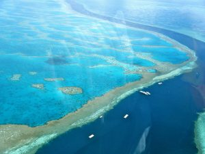 Aerial Shot of Reef JPEG aligned center (Caption: Photograph of The Great Barrier Reef shot from a helicopter ride over the Reef at the Witsunday Islands, Australia.).