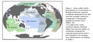Figure 1. Areas within the study site, approximately two thirds of the world's ocean.