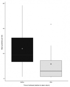 Box and whisker plot showing the decrease in isopods in the time after the fish have returned to the reef vs. immediately before. Figure from Sikkel et al 2017.