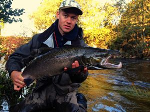 Atlantic salmon are popular sport fish in Norway and beyond [Image by Vetle Kjærstad]