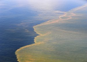 An oil slick treated by dispersants. The color of the oil slick appears much lighter from the surface, as a lighter or coffee-colored oil slick is typical of the appearance of dispersed oil. Shown here May 6, 2010, is an aerial view of the Deepwater Horizon oil spill off the coast of Mobile, Ala., taken from a U.S. Coast Guard HC-144 Ocean Sentry aircraft. (U.S. Navy photo by Mass Communication Specialist 1st Class Michael B. Watkins/Released)